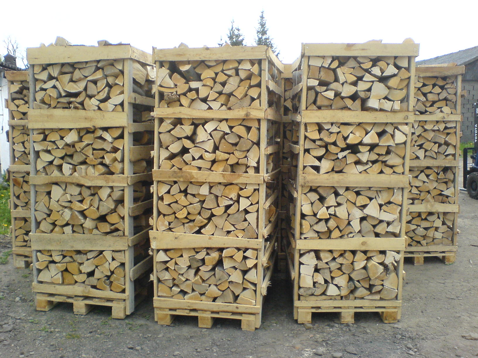 Пьяная в дрова 19 фотография
